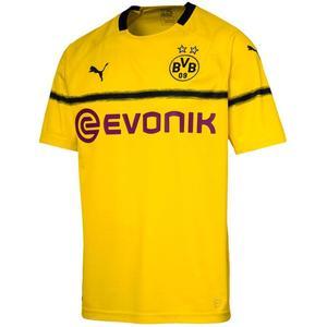 Puma BVB Herren Cup Trikot 2018/19 gelb/schwarz