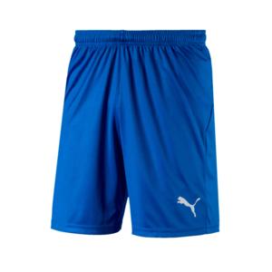 Puma Short Liga Core blau/weiß