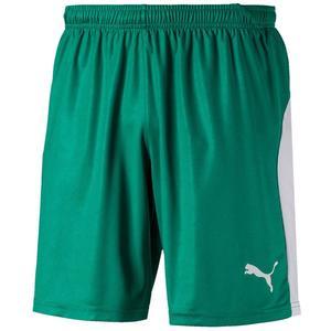 Puma Short Liga grün/weiß
