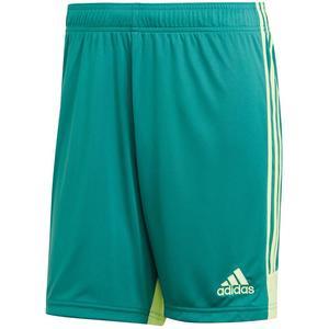 adidas Short Tastigo 19 grün/gelb