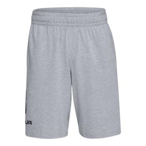 Under Armour Short Sportstyle Cotton Graphic grau/schwarz