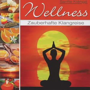 Various - Wellness Zauberhafte Klangreise - 1 CD