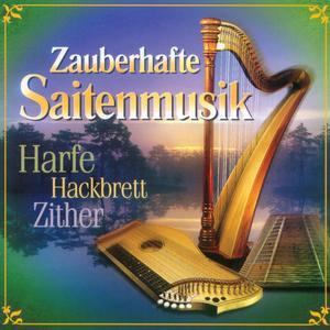 Various - Zauberhafte Saitenmusik - 1 CD