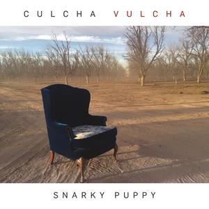 Snarky Puppy - Culcha Vulcha - 1 CD