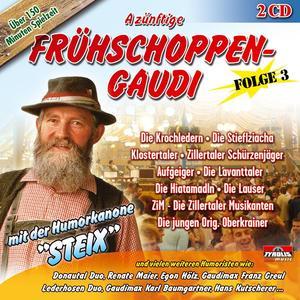 Various - A Zünftige Frühschoppengaudi (3) - 2 CD