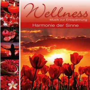 Various - Wellness Harmonie Der Sinne - 1 CD