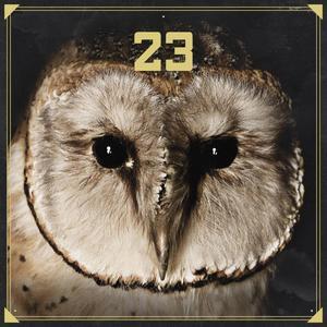 23 - 23 - 1 CD