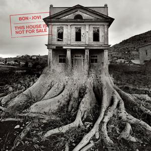 Bon Jovi - This House Is Not For Sale - 1 CD