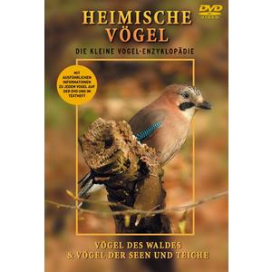 Various - Heimische Vögel - Wald, Seen, Teiche - 1 DVD