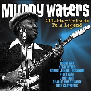 Various - Muddy Waters All - Star - 1 CD