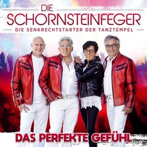 Schornsteinfeger,Die - Das perfekte Gefühl - 1 CD
