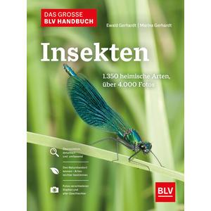 Das große BLV Handbuch Insekten