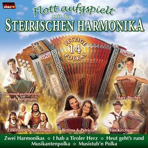 FLOTT AUFGSPIELT MIT DER - STEIR. HARMONIKA - 1 CD