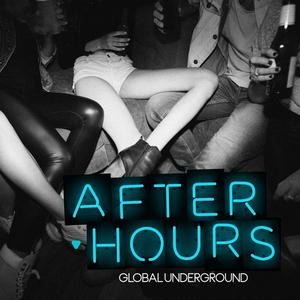 Global Underground:Afterhours 8 / Various