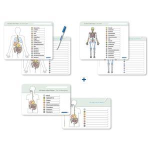 Ich kenne meinen Körper - Organe / Skelett / Verdauung- 3 Tafeln im Set mit Stift