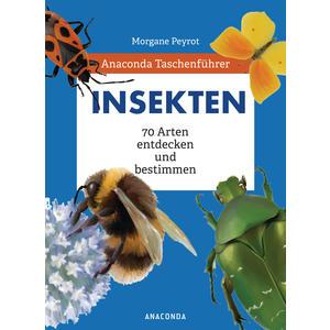 Anaconda Taschenführer Insekten