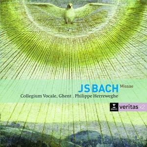 MESSEN BWV 233-235 / HERREWEGHE/COLLEGIUM VOCALE GH