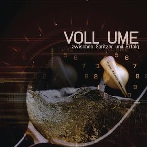 Wiener Wahnsinn - Voll Ume-Zwischen Spritzer und Erfolg - 1 CD