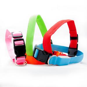 LED Sicherheitshalsband verstellbar in verschiedenen Farben