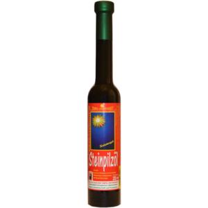 Bio Steinpilzöl, 200ml, Kräutergut Giessauf