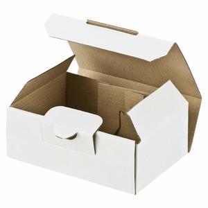 100 Stk Maxibriefkarton und Warensendung Versandkarton SMALL, 120x80x45mm, weiß
