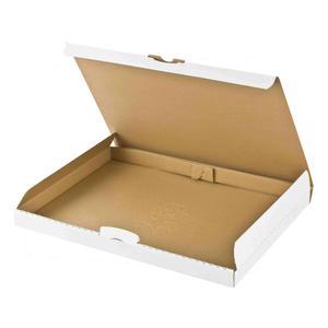 100 Stk Maxibriefkarton DHL briefkastentauglich Höhe 3cm 340x250x30mm DIN A4/B4 weiß