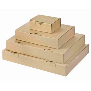 100 Stk Maxibriefkarton und Warensendung Versandkarton, 305x220x46mm für Din A4, braun