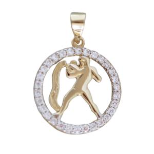 Sternzeichen Wassermann Gold 585 Anhänger mit Zirkonias Tierkreiszeichen 14 Kt