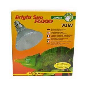 Lucky Reptile Bright Sun FLOOD Jungle 70 W