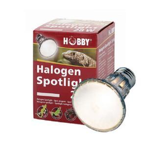 Hobby Halogen Spotlight, 28W