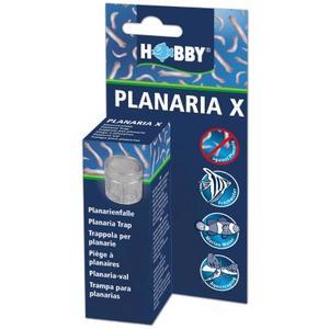 Hobby Planaria X - Planarienfalle