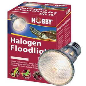 Hobby Halogen Floodlight, 75W